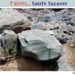 z12_Sainte-Suzanne