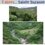 z5_Sainte-Suzanne